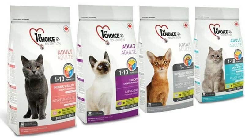классы сухих кормов для кошек