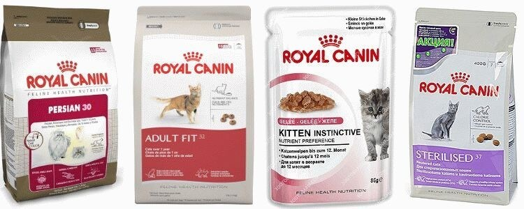 Royal Canin корм для котів