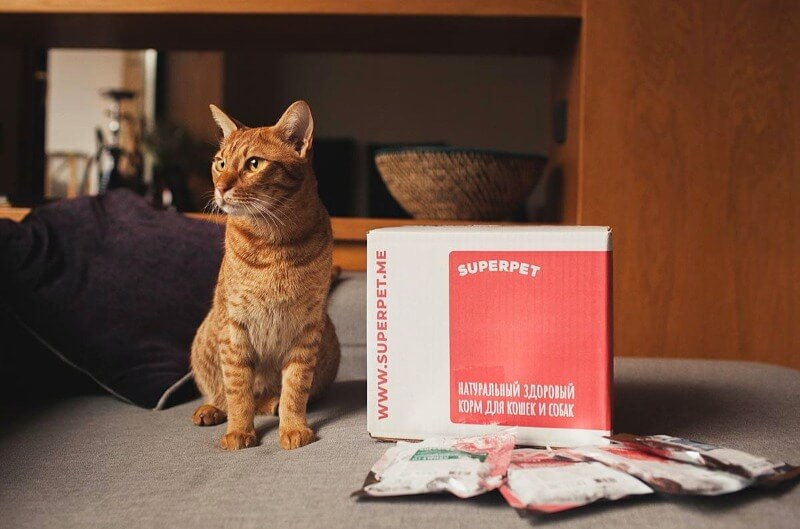 корм для кошек superpet